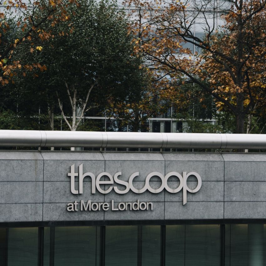 The Scoop Logo on The Scoop